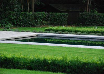 piscine_plantation1